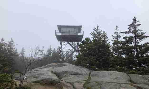 Beech Mountain, W1/DI-006