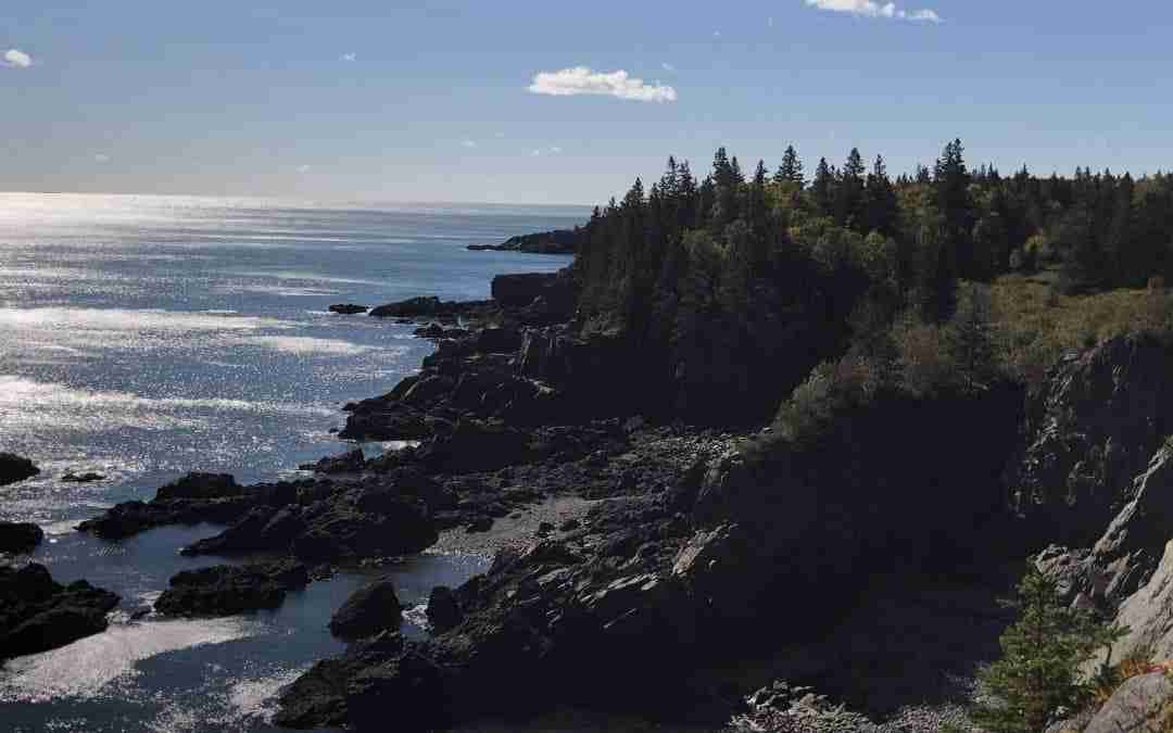 The Bold Coast: Cutler Coast Public Land
